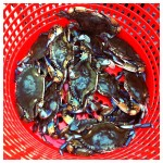 Day's Catch of Crabs, Crab Feast